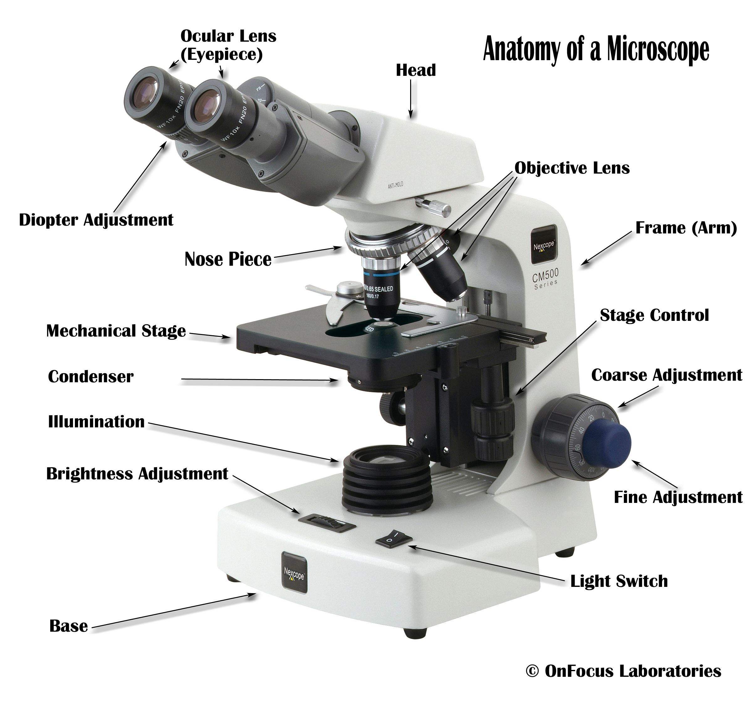 Where can you find pictures of a labeled microscope - The QA wiki