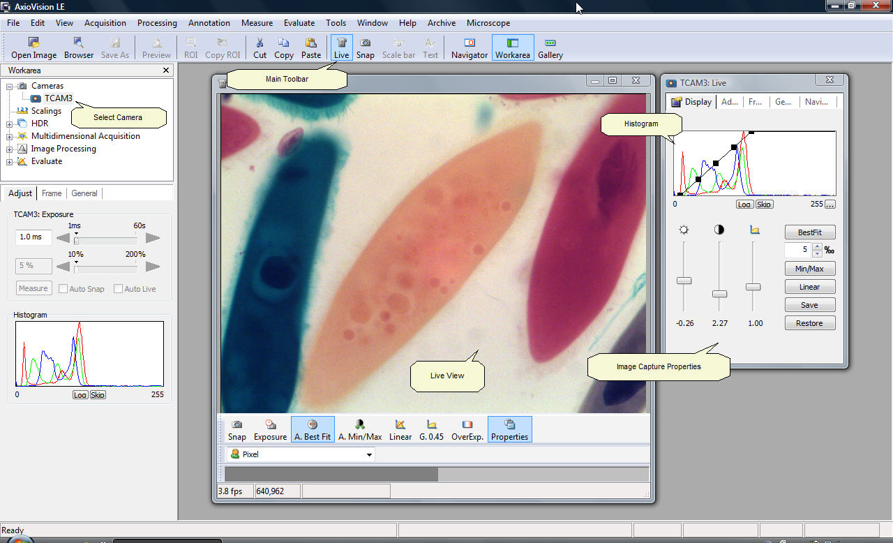 Using tucsen microscope camera with carl zeiss axiovision for Image capture