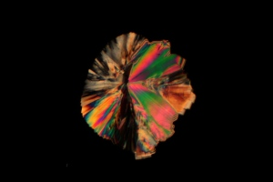 White Sugar Crystal under Polarized Light